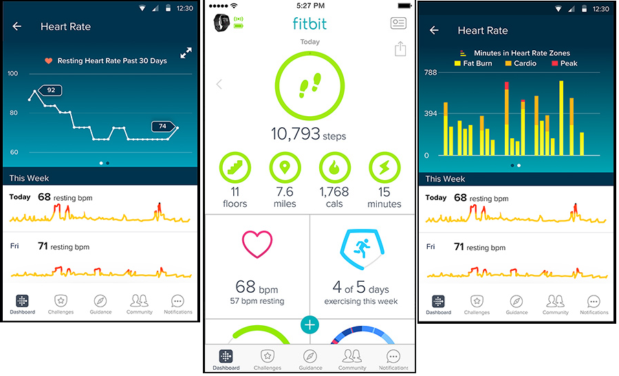 fitbit-mobile-application-01